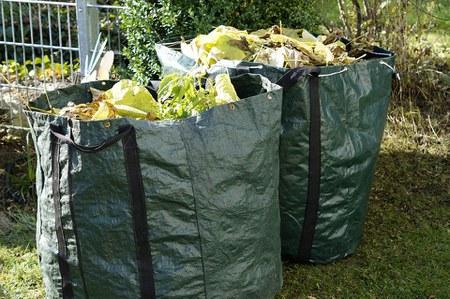 Déchets verts: collectes prolongées!