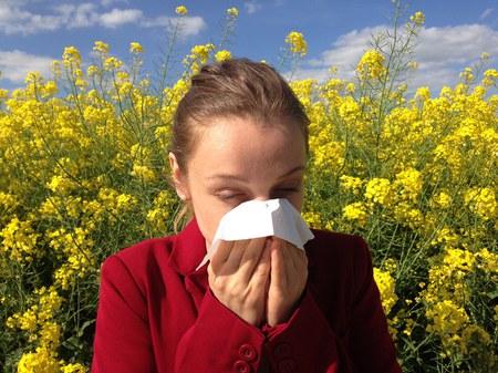 Conférence sur les allergies